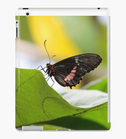 butterfly 2014 iPad Case/Skin