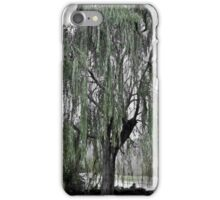 Willow After a Storm iPhone Case/Skin