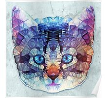 abstract kitten Poster