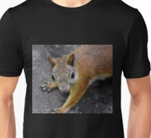 the eyes' of a ... squirrel Unisex T-Shirt