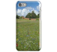 An expansive wildflower meadow in full bloom, a mirage of colour  iPhone Case/Skin