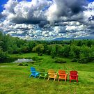 Cellar Door Winery, Lincolnville, Maine by fauselr