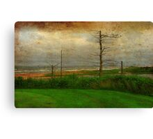 Desolate Beach Landscape | Stormy Seascape Canvas Print