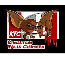 Kingston Falls Chicken Photographic Print