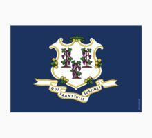 Connecticut State Flag  by USAswagg