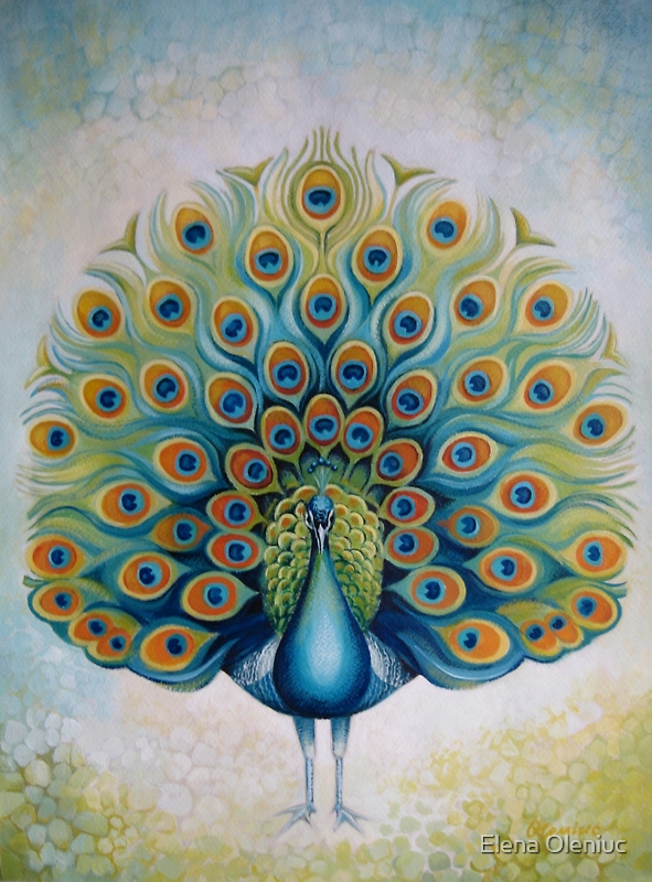 Peacock by Elena Oleniuc