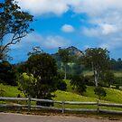 Mount Gulaga from Central Tilba NSW by Yukondick