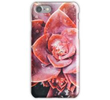 Water Drops on Red Succulent Plant iPhone Case/Skin