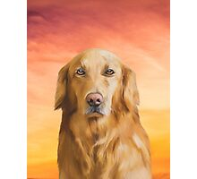 Golden Retriever Dog Water Color Art Oil Painting Photographic Print