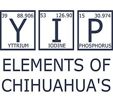 YIP Chihuahua's Periodic Table  by raineOn