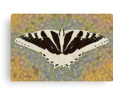 BUTTERFLY CHANGES WEATHER Canvas Print