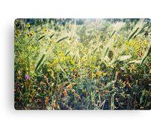 Green Spring Meadow Shot on Porta 400 Film Canvas Print