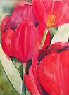Red Tulips by Val Spayne