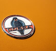 1964 Shelby Cobra - emblem detail by MuethBooth