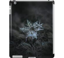 Snowflake of 19 March 2013 iPad Case/Skin