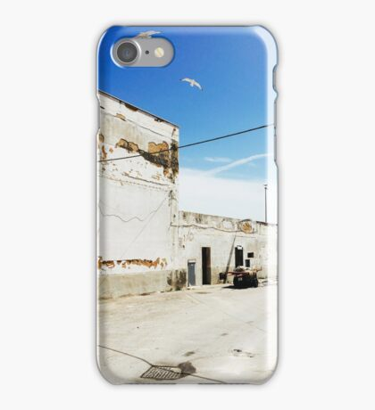 Sicilian Seagulls iPhone Case/Skin