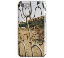 Horses Feeding Behind Fence iPhone Case/Skin
