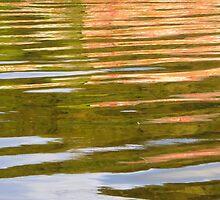 River Foyle Reflections by Fara