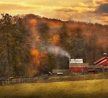Autumn - Farm - Morristown, NJ - Charming farming by Mike  Savad