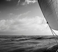 Sailing with the Jib. by M. van Oostrum