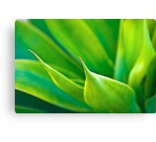 Green & Greener Canvas Print