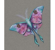 CosMoth (Moth of the Cosmos) Photographic Print