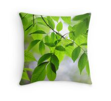 Green Leaves of Ash Tree Throw Pillow