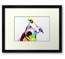 Pit bull | Rainbow Series | Pop Art Framed Print