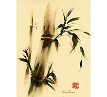 """""""Calm""""  Sumi Sumie bamboo painting Photographic Print"""