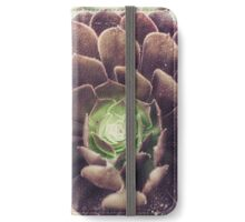Efflorescence No. 5713 iPhone Wallet/Case/Skin