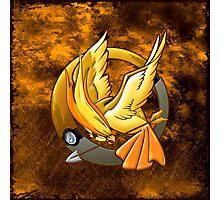 Hunger Phoenix Pokeball Photographic Print