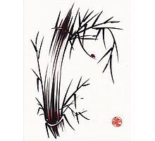 Adventurous Spirit - Sumi Sumie Ink Brush Painting Photographic Print