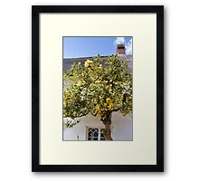 Ye Old Holly Tree...........part 2 Framed Print
