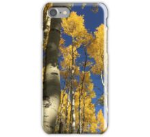Aspen Trees and Sky with Sky iPhone Case/Skin