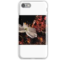 Sundew iPhone Case/Skin