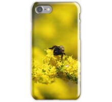 Bumblebee Surprise I iPhone Case/Skin