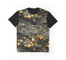 The Hidden Land – A Field of Golden Boulders Graphic T-Shirt