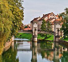 River Reflections in Ljubljana by Dmitry Shuster