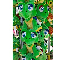Blue Eyed Frogs Photographic Print