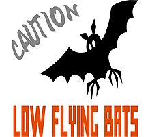 Caution Low Flying Bats by raineOn