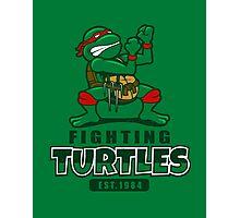 Fighting Turtles Photographic Print