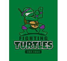 Fighting Turtles - Donatello Photographic Print