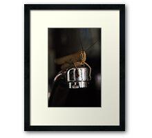 Good Morning Mr Cricket Framed Print