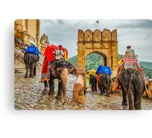 Elephants at Amber Fort - Jaipur - Rajasthan - India Canvas Print