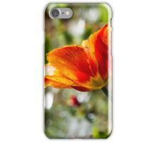 Wet Orange And Yellow Tulip iPhone Case/Skin