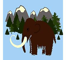 Woolly Mammoth - MouNtains, Trees, Evergreen, Blue Skies, Sky,  Photographic Print