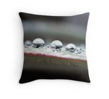 UFO? Throw Pillow
