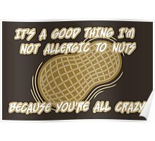 It's a Good Thing I'm Not Allergic to Nuts Poster