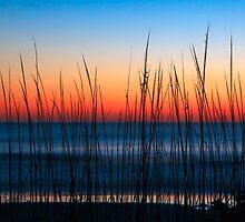 Dune Grass Dawn by Kenneth Keifer
