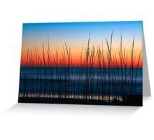 Dune Grass Dawn Greeting Card